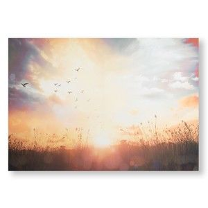 Obraz Graham & Brown Serene Sunset Meadow, 100x70 cm
