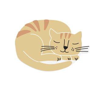 Pomarańczowa wycieraczka Really Nice Things Cat Ball, 70x40 cm