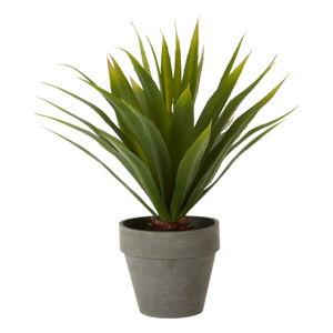 Sztuczny kwiat agawy w szarej doniczce Premier Housewares Fiori