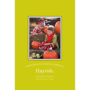 Saszetka o zapachu jabłka, cynamonu, goździków i wanilii Bridgewater Candle