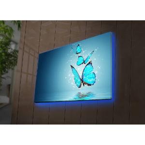 Podświetlany obraz Robin, 70x45 cm